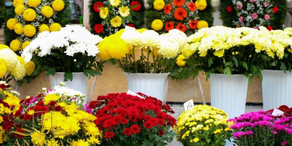 flori-si-coroane-andreas-funerare2